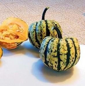 Compre Sementes de Abóbora Sweet Dumpling Winter
