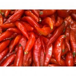 Pimenta Chili Mexicana: 20 sementes