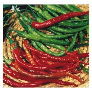 Pimenta de Cayenne: 40 sementes