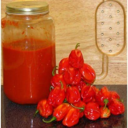 Pimenta Red Habanero Sementes