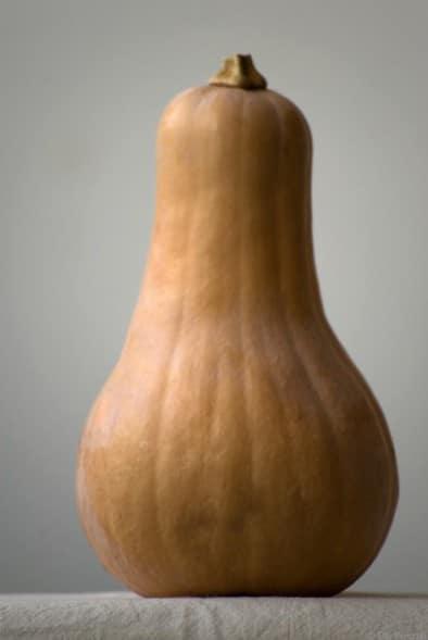Sementes de Abóbora Butternut