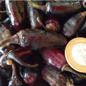 Comprar Sementes de Pimenta Baiana