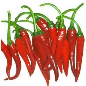 Comprar Sementes de Pimenta Cayenne