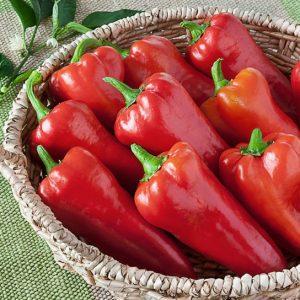 Sementes de Pimenta Doce Italiana