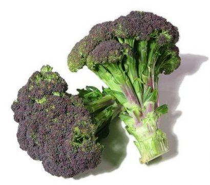 Brócolis Roxo: 50 Sementes