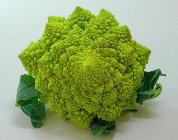 Couve-Flor Verde: 50 Sementes