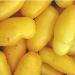 Tomate Banana: 20 Sementes