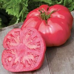 Tomate Black Plum: 20 Sementes