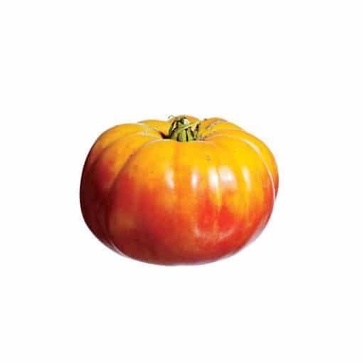 Tomate Flame: 20 Sementes