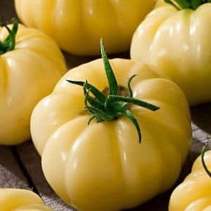 Tomate Great White Beefsteak: 20 Sementes