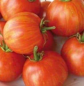 Tomate Tigerella: 20 Sementes