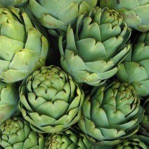 Alcachofra: 10 Sementes