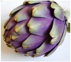 Alcachofra Violeta: 10 Sementes