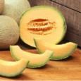 Melão Planters Jumbo: 10 Sementes