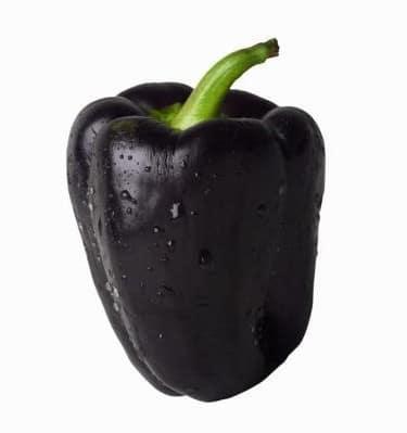 Pimentão Black: 10 Sementes