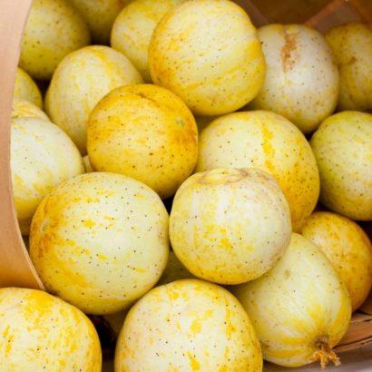 Comprar Sementes Pepino Limão (Lemon)