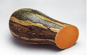 Compra de Sementes Abóbora Paulista