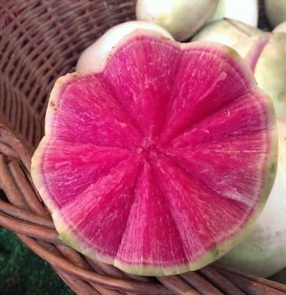 Comprar Sementes de Rabanete Melancia