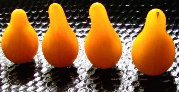Sementes de Tomate Yellow Plum (Yellow Pear)
