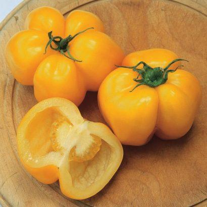 Sementes de Tomate Yellow Stuffer