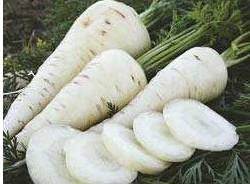 Sementes Orgânicas Cenoura Branca Lunar