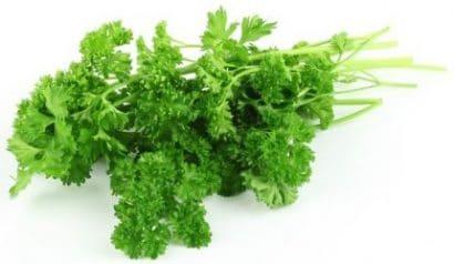 Sementes Orgânicas de Salsa Crespa