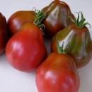 tomate-trifele-japones