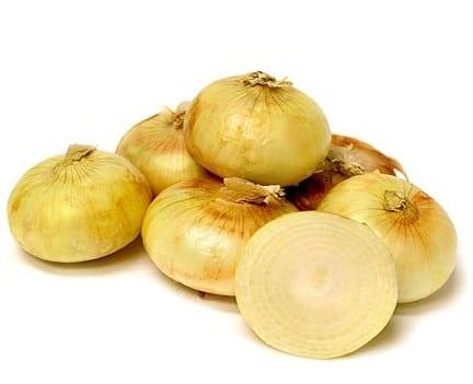 Sementes Cebola Yellow Cipollini