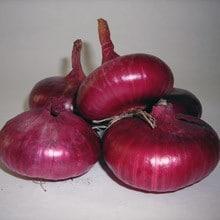 Cebola Red Cipollini ORGÂNICO