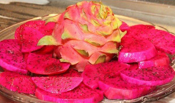 Sementes de Frutas Pitaya Vermelha (Dragon Fruit)