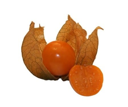 Sementes de Physalis Fruta (Golden Berry)