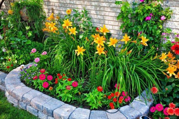 Fertilizante Forth Flores Balde 400g