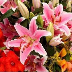 Fertilizante Forth Flores Balde 400g