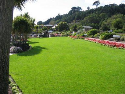 Fertilizante Forth Jardim 60ml