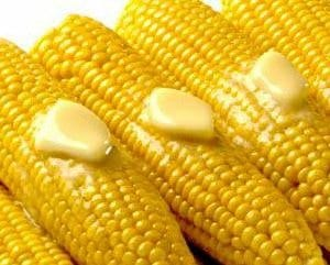 Sementes de Milho Itapoã