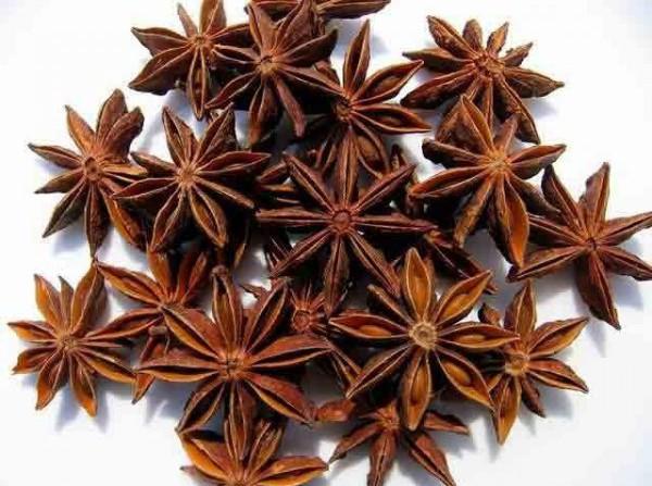 anis estrelado desidratado para consumo 20g soflor sementes