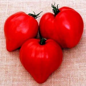 tomate-coracao-de-boi