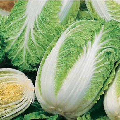 Sementes Crioulas de Couve Chinesa (Agroecológico)