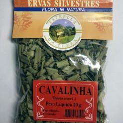 Cavalinha Para Chá Equisetum arvense