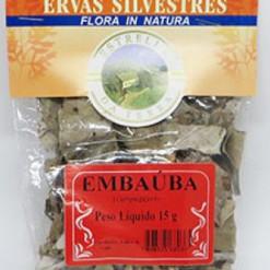 Embaúba Para Chá