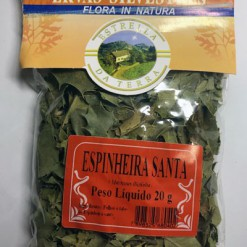 Espinheira Santa Para Chá Maytenus ilicifolia