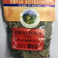 Graviola Para Chá Annona muricata