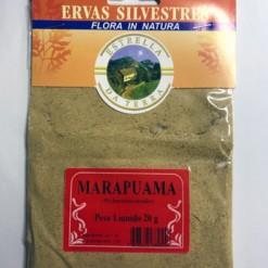 Marapuama Para Chá Ptychopetalum olacoides