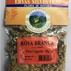 Rosa Branca Para Chá Rosa centifolia