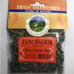Tanchagem Para Chá Plantago major