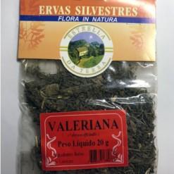 Valeriana Para Chá Valeriana officinalis