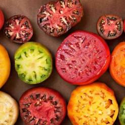 Sementes de Tomates